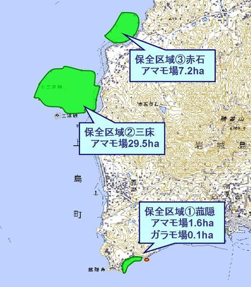 091205_iwaginishi.jpg