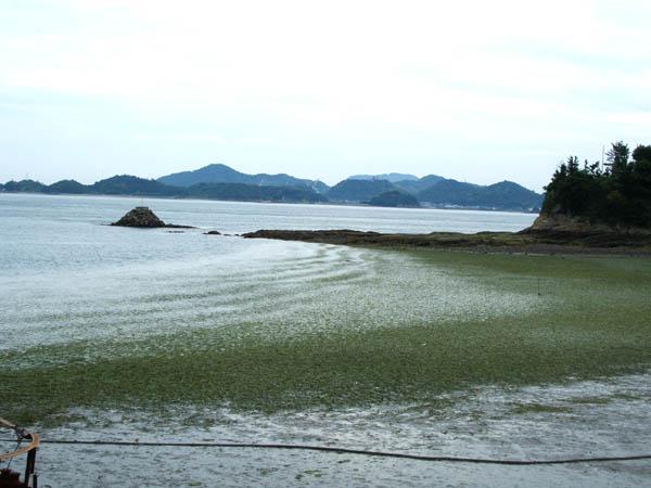 shimanotakara