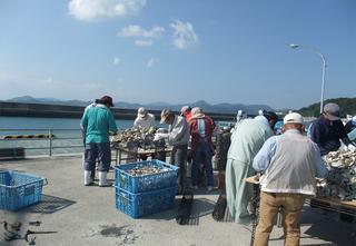 20081002gyosho1.jpg